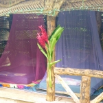 Fale with mosquito nets